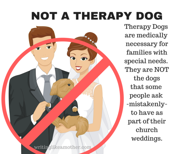 not-a-therapy-dog